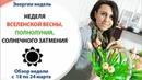 НЕДЕЛЯ ВСЕЛЕНСКОЙ ВЕСНЫ, ПОЛНОЛУНИЯ, СОЛНЕЧНОГО ЗАТМЕНИЯ Неделя с 18 по 24 марта 2019г.