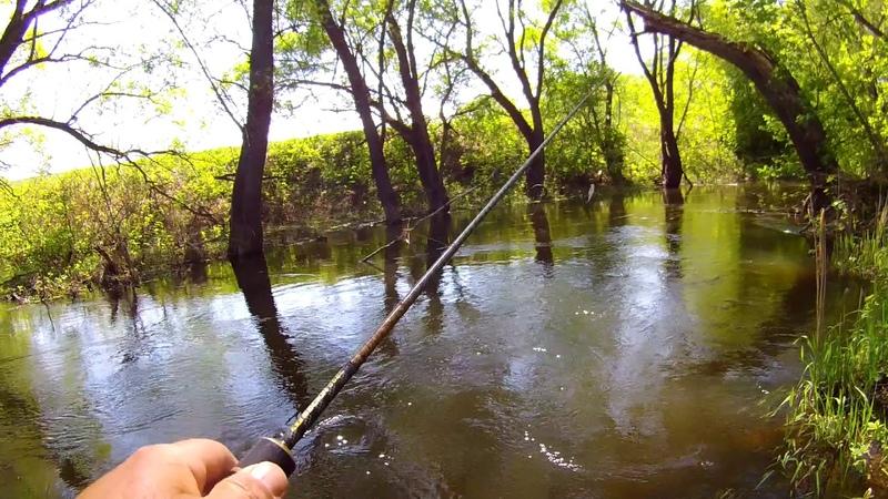 Весенняя река. В поисках голавля