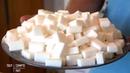 Intégrale sucre, comment ils nous rendent accros ! - Tout compte fait