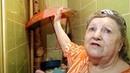Бабушка о соседе с кошками и зонтика в туалете
