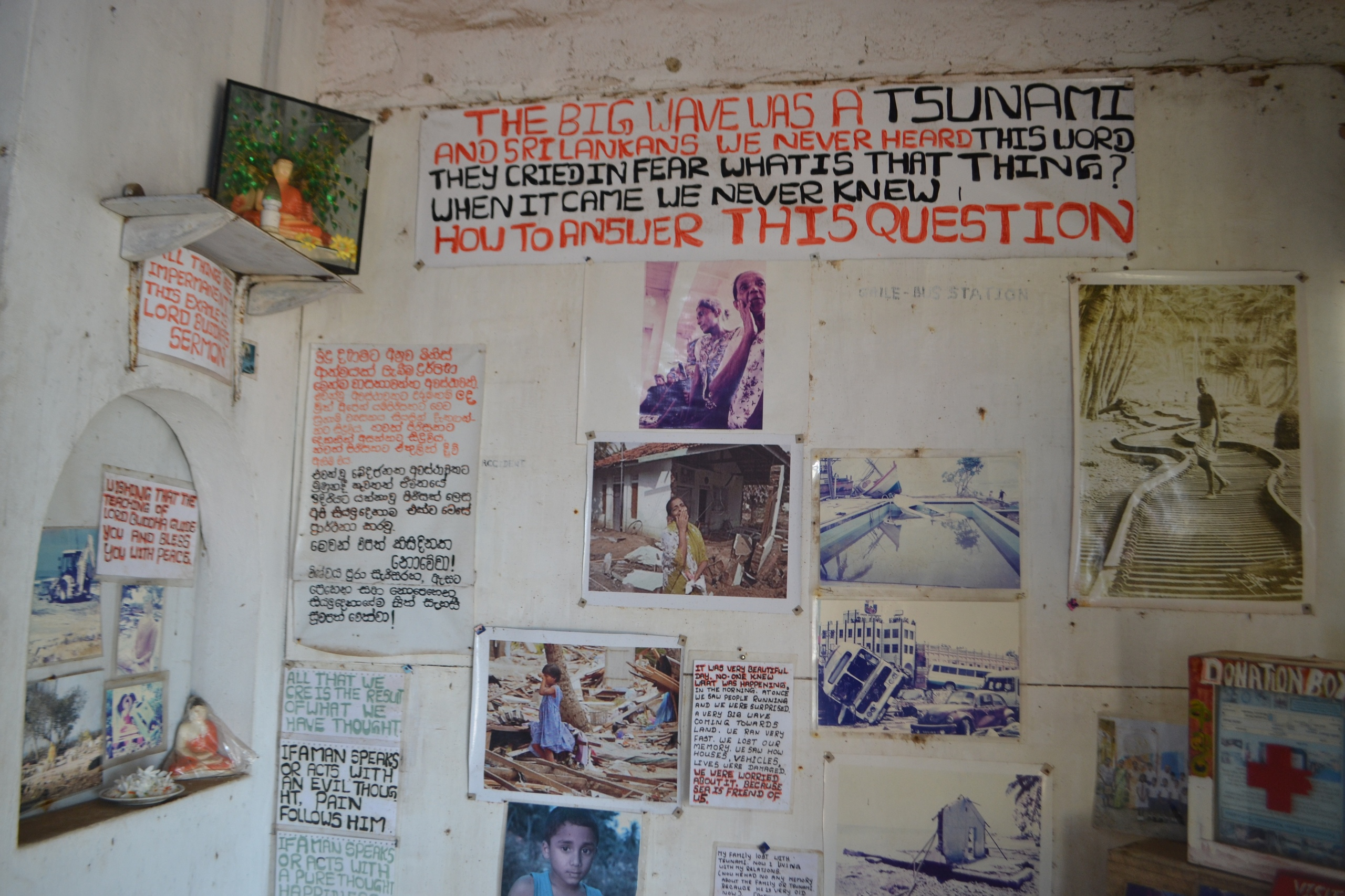 Шри Ланка (фото) - Страница 2 LDuFuLXEmzE
