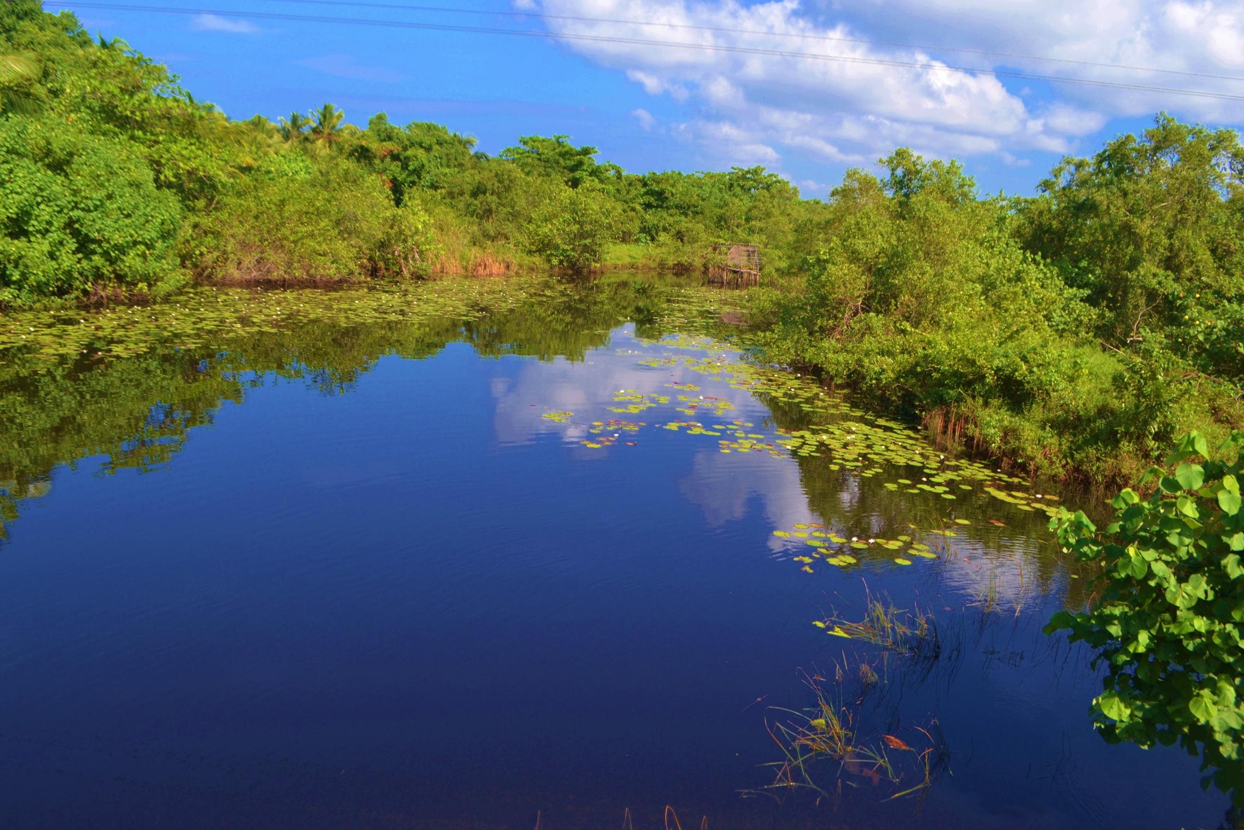 Шри Ланка (фото) - Страница 2 KAyAD3TKbwc
