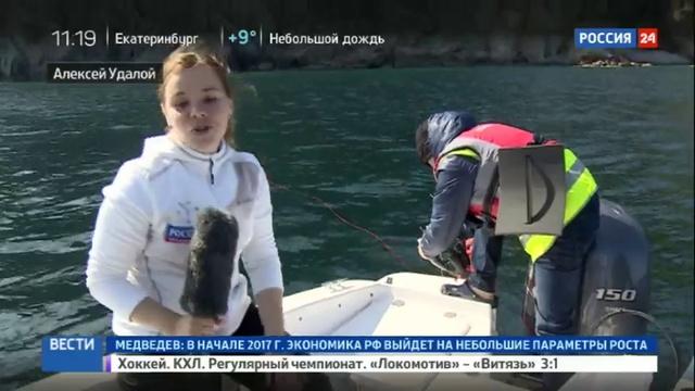 Новости на Россия 24 • Трудовая рыба: в Приморье соревнуются подводные охотники