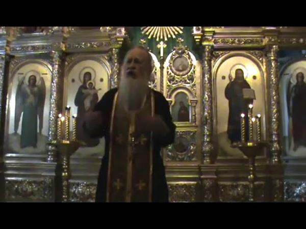 Искушение авторитетом патриарха. о. Иоанн Гончаров, Самара