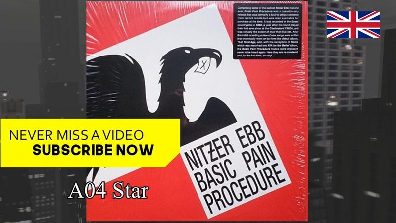 Nitzer Ebb - Basic Pain Procedure (Vinyl) 1983
