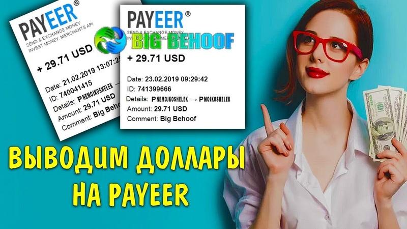 Сразу или частями, не важно, выводим доллары в проекте Big behoof на кошелек Payeer