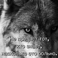 Анкета Сергей Грабихин