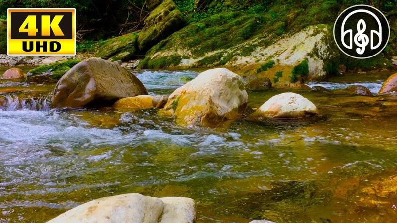 Звуки природы для релаксации, медитации и сна! Шум горной реки 3 часа!