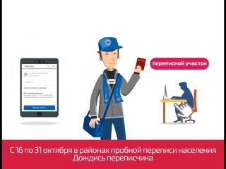 Perepis_infografika_10s_federal_webm