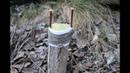 Прищепка плодовых деревьев | Прививка за кору