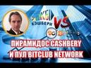 CASHBERY КЭШБЕРИ VS BITCLUB NETWORK. СРАВНЕНИЕ. ОБЗОР