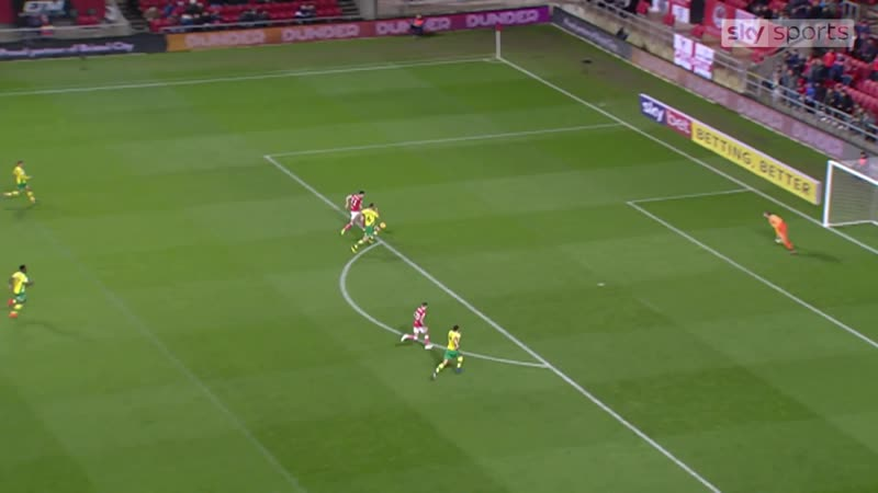 Bristol City 2-2 Norwich