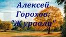Журавли в исполнении гармониста Алексея Горохова