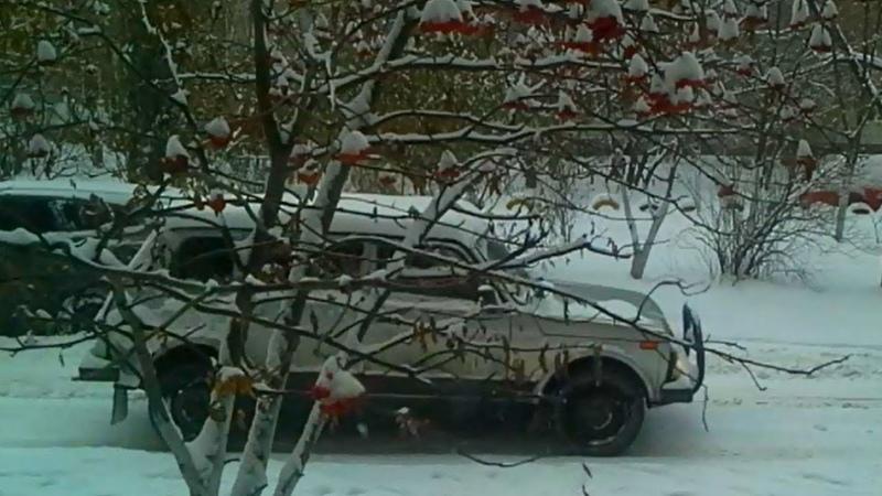 ❄️ЖИЗНЬ нашего двора... ❄️Воронеж...❄️ 7 декабря 2018 год... Зима...идёт снег...❄️