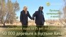 ПУСТЫНЯ ПРЕВРАЩАЕТСЯ В ОАЗИС