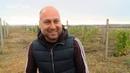 Бизнес на селе 33 Как обычный парень виноградную долину в Татарстане создал
