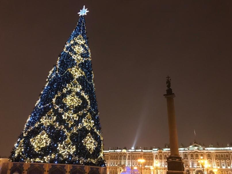 Вика Щиплецова   Санкт-Петербург