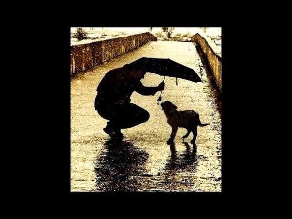 ♥ღ♥Верните в моду доброту