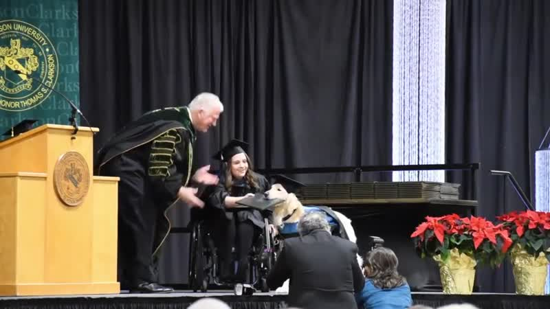 Good boy receiving an honorary diploma when his handler graduates from college