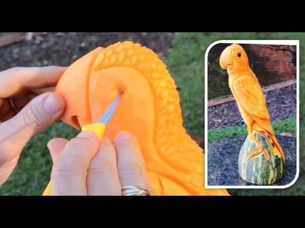 Escultura de pássaro na abóbora passo a passo