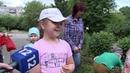 Юные череповчане организовали на территории образовательных учреждения свой цветочный мир