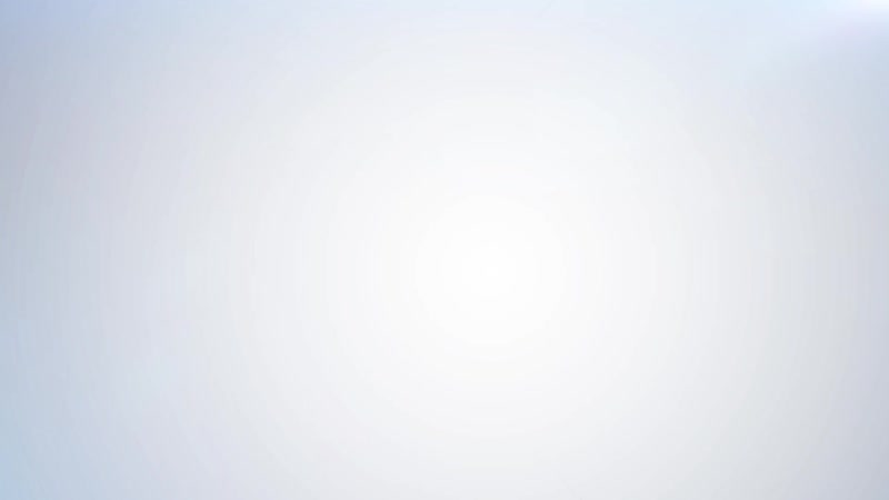 Video_endospheres