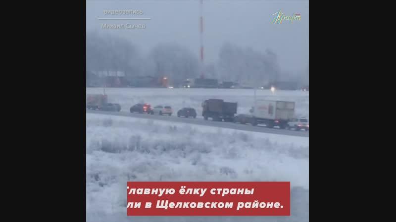 Кремлёвская ёлка проехалась по Бетонке