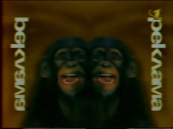 Рекламный блок (ОРТ, 31.12.1996) (2)