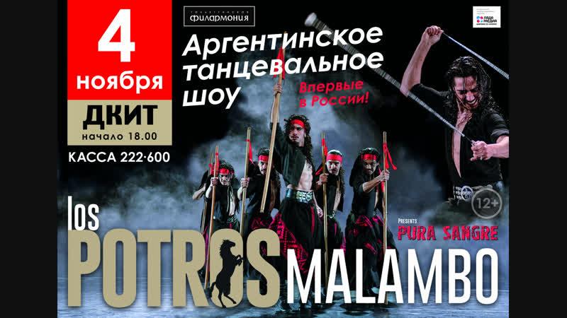 Los Potros Malambo промо Тольятти 2018