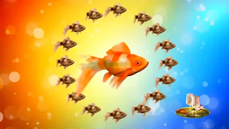 Футаж С Днем рождения Золотая рыбка исполняет желания mp4