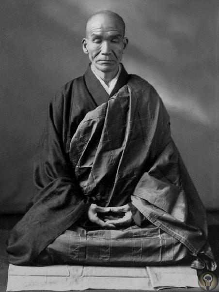 Соприкосновение с жизнью: учение Кодо Саваки Роси, или дзен для ничего «Тебе не хватает на жизнь Тогда просто умри! Ты живёшь, чтобы работать, или ты работаешь, чтобы жить» Публикуем материал