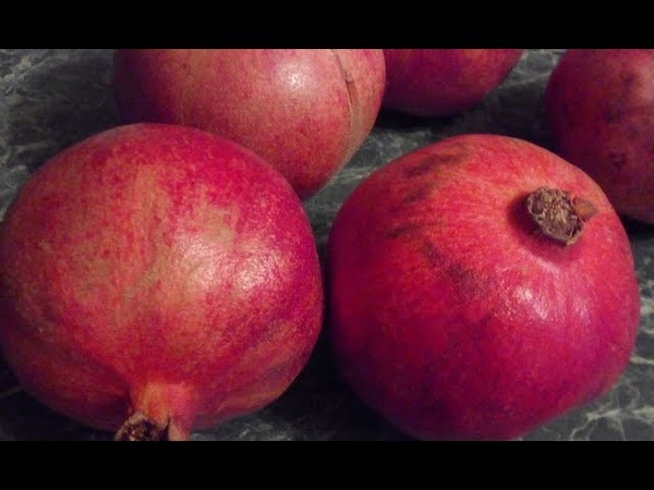 «Яблоко Евы» или гранат: фрукт, полезные свойства которого стали легендой