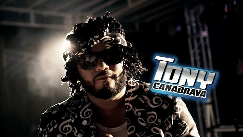 Tony Canabrava - A Rave do Tony