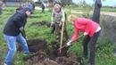 Кадеты высадили яблоневый сад в деревне Слобода Сокольского района