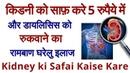 किडनी को साफ़ करे वह भी सिर्फ 5 रुपैये में। kidney ki safai Kid