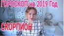 СКОРПИОН ГОРОСКОП НА 2019 от Olga Stella