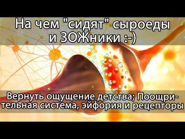 🍏 Сыроедение и ЗОЖ как зависимость эндогенные наркотические вещества гормоны и эйфория