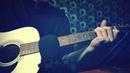 Алексин - Малолетние шалавы Guitar 12 strings