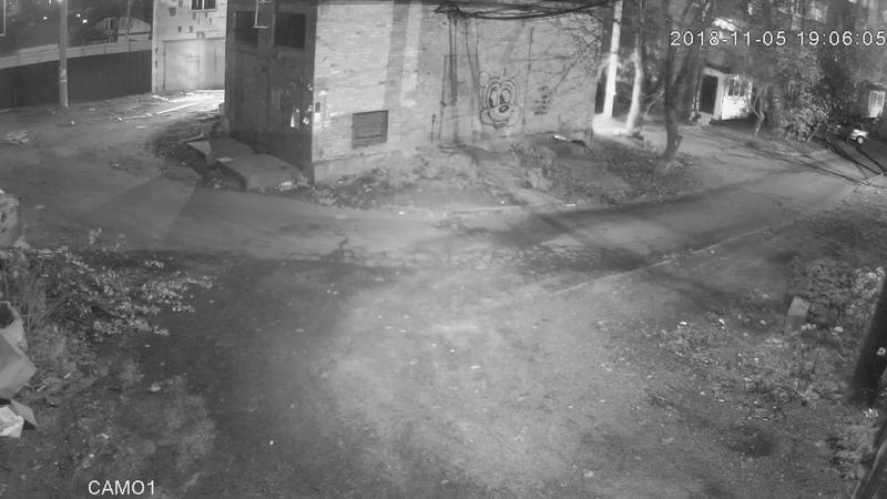 Відеодоказ Підпал будиночків для безпритульних котів у м. Умань