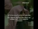 Чтец-Мухаммад аль-Люхайдан🥀