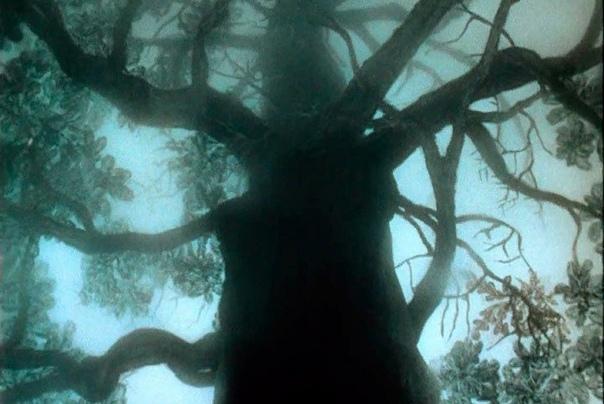 Тайный смысл мультфильма Ёжик в тумане Самый известный мультфильм Ёжик в тумане не любят дети: он не развлекает их погонями, шутками и яркими персонажами. На самом деле это глубочайшее