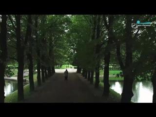 Петербург. Осень. Золотая листва
