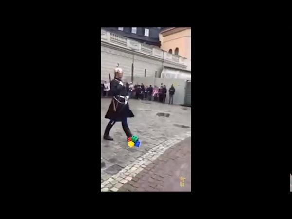 Swedish Guards steps on lego