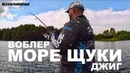 НА ЭТОМ ПРУДУ ЩУКИ МОРЕ Рыбалка на Спиннинг ТВИЧИНГ и ДЖИГ Воблеры и Резина для Щуки