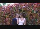 15 сентября Анастасия и Алексей