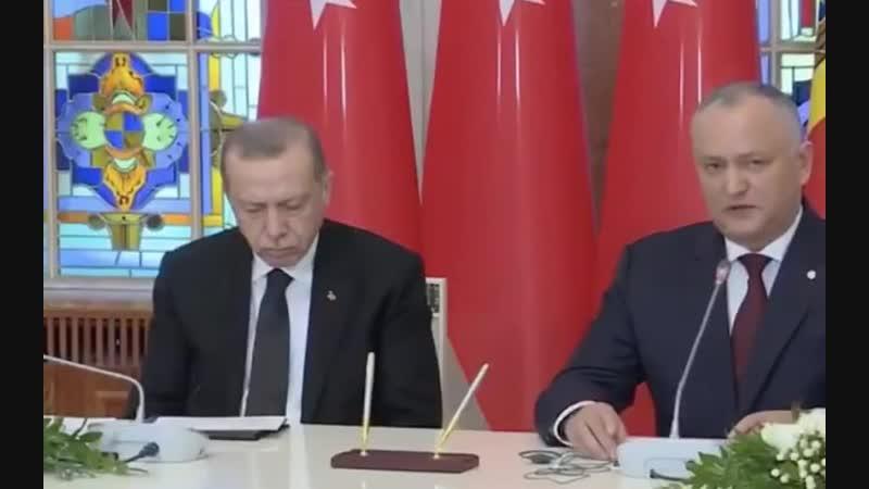 Эрдоган уснул на встрече с президентом Молдавии.
