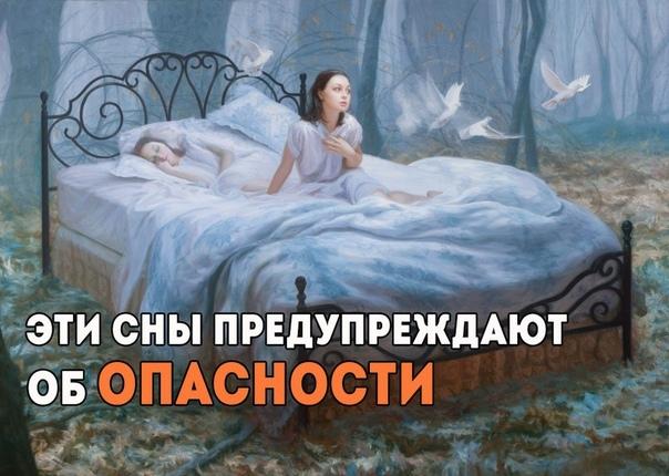 https://pp.userapi.com/c852020/v852020648/5564b/-Y6mpiiZB9E.jpg