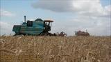 Уборка урожая-2018 в Казахстане / Костанайская область Карасуский район село Ленино
