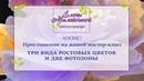 Анонс-Живой мастер класс Ростовые цветы и фотозоны
