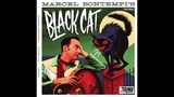 Marcel Bontempi - Black Cat